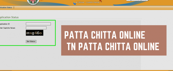 Patta in history, UDR patta, Patta wiki, Patta registration fees, Types of patta in assam, Difference between patta and tslr, Jirayati patta, Patta for flats,